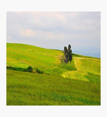 Life On A Hills V Photographic Print