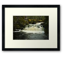 Pencil Pine Falls, Cradle Mountain Framed Print
