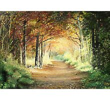 Tunnel in Wood Photographic Print