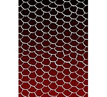 Red and Black Scales Photographic Print