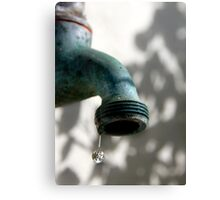 Use Water Wisely Canvas Print