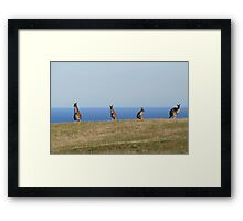 Deep Creek,S.A. Admiring the view. Framed Print