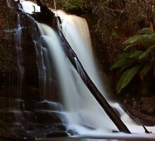 "Lilydale Falls @ 31mm"" by Husky"