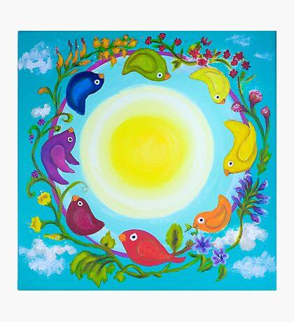 Rainbow Circle Flourishes Photographic Print
