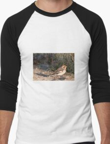 Snow Bunting (winter plumage) Men's Baseball ¾ T-Shirt