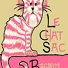 Le Chat Sac by SlideRulesYou
