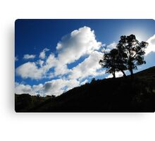 Adelaide Hills Winter Canvas Print