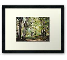Sorica SPECIAL OFFER 300 $ !!! Framed Print