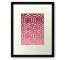 Salmon Scales Framed Print