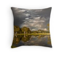 Storm over Mt MacIntyre S.A. Throw Pillow