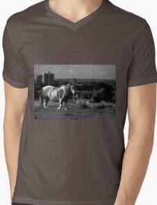 Gypsy Pony Mens V-Neck T-Shirt