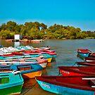 Boats on the River by Nira Dabush