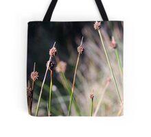 winter grass in the sun Tote Bag