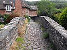 My England. Packhorse Bridge at Allerford by trish725