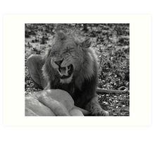 Lion Love Part III Art Print