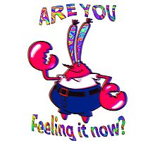 Are you feeling it now Mr Krabs? Photographic Print