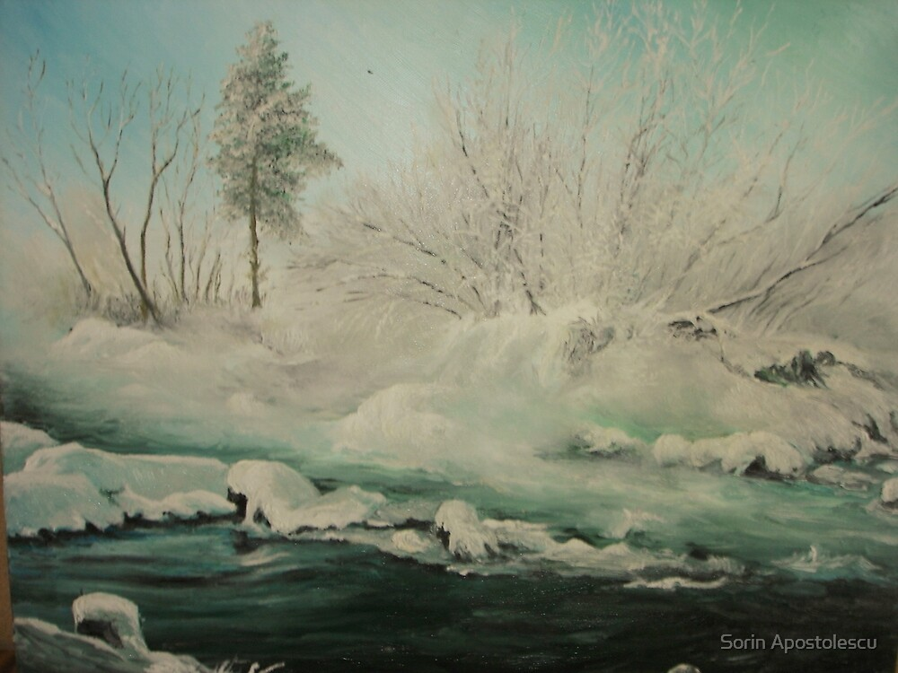 Frozen River SPECIAL OFFER 175 $ !!! by Sorin Apostolescu