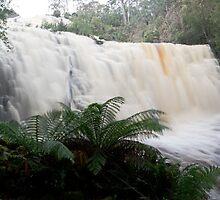 Dip Falls, Pumping! by tasadam