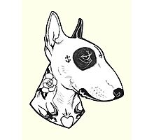 Tattooed Bullterrier Photographic Print