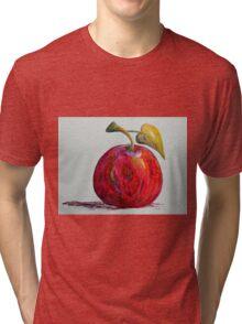Kaleidoscope Apple or APPLE FOR THE TEACHER Tri-blend T-Shirt