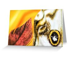 Sweetness and Passion Greeting Card