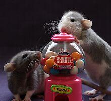 Dubble Bubble by Ellen van Deelen