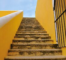 Going Up for a View by Valerie Rosen