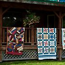 Quilts on Display by Sally Winter