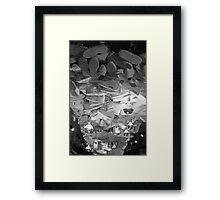 Combo Kicks Framed Print