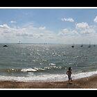 Beach Panoramic  by Russ  Shepherd