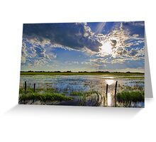 Flooded Field In Alberta Greeting Card