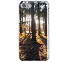 Sunlight through the trees iPhone Case/Skin