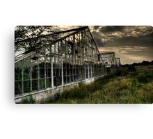 Abandoned Greenhouses 2 - HDR Canvas Print