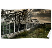 Abandoned Greenhouses 2 - HDR Poster