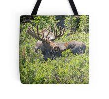 Smiling Bull Moose Tote Bag