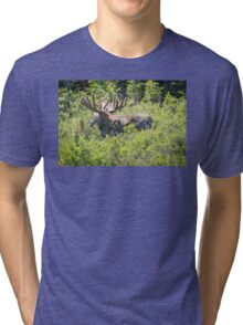 Smiling Bull Moose Tri-blend T-Shirt