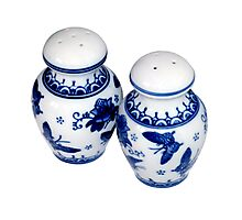 Blue and White Salt & Pepper Shakers Photographic Print