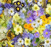 Spring Flowers by Arizonagirl