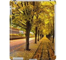 Boston, fall mood iPad Case/Skin