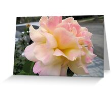 Big, Pink and Delicate Greeting Card