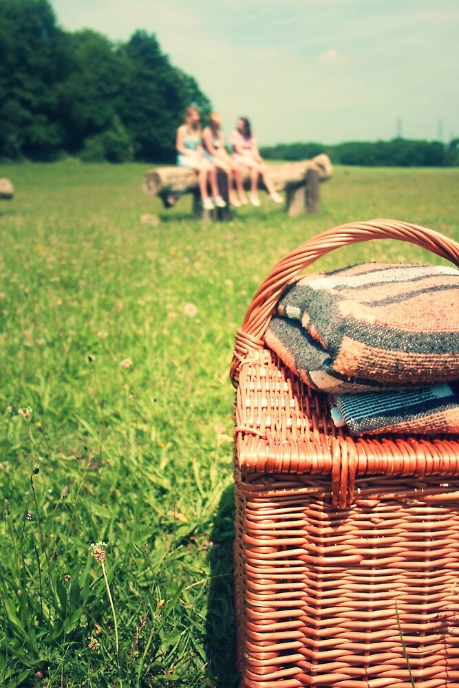 let's go for a picnic by Maria Carroll