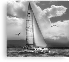 Bird Watch Sail Canvas Print
