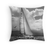 Bird Watch Sail Throw Pillow