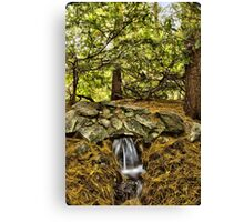 Little water fall Canvas Print
