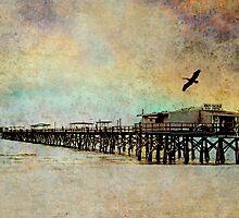 Reddington Pier by Stephen Warren