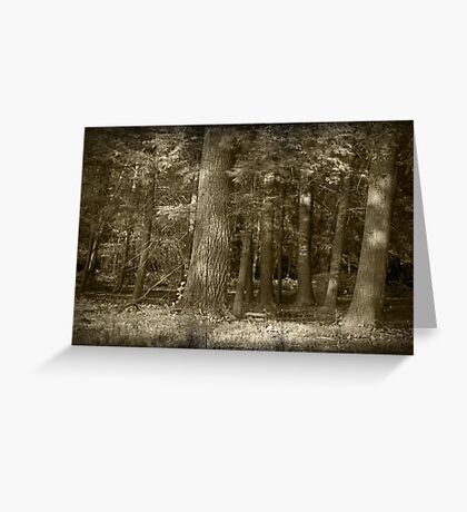 Into The Trees Greeting Card