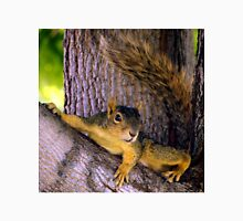 Animal - Squirrel watching from the Tree T-Shirt
