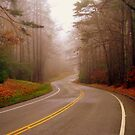 Foggy Turn by Colleen Rohrbaugh