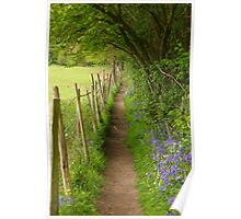 Country path with bluebells Poster