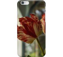 Of Tulips and Garden Windows iPhone Case/Skin
